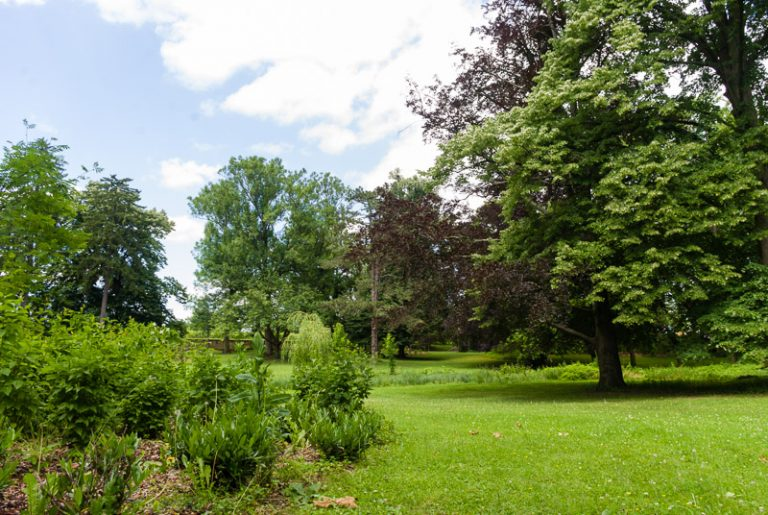 Schloßgartenbaumpark