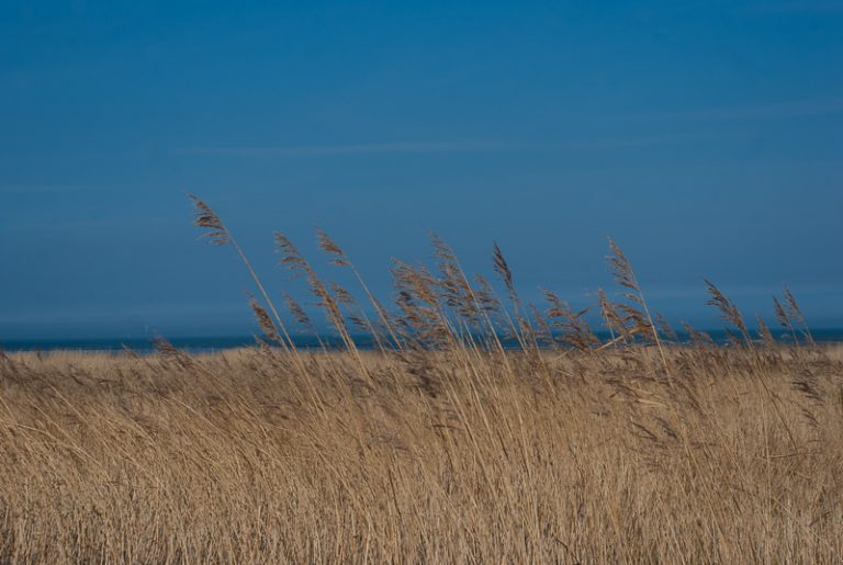 nordsee-25