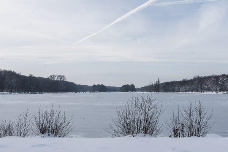 winterpark-14