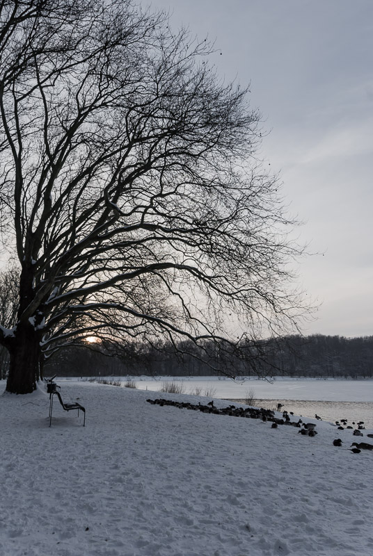 winterpark-16
