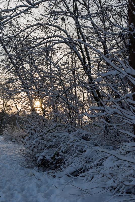 winterpark-4