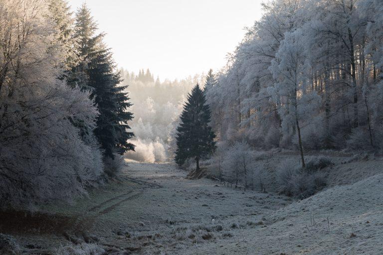 westerwald-28