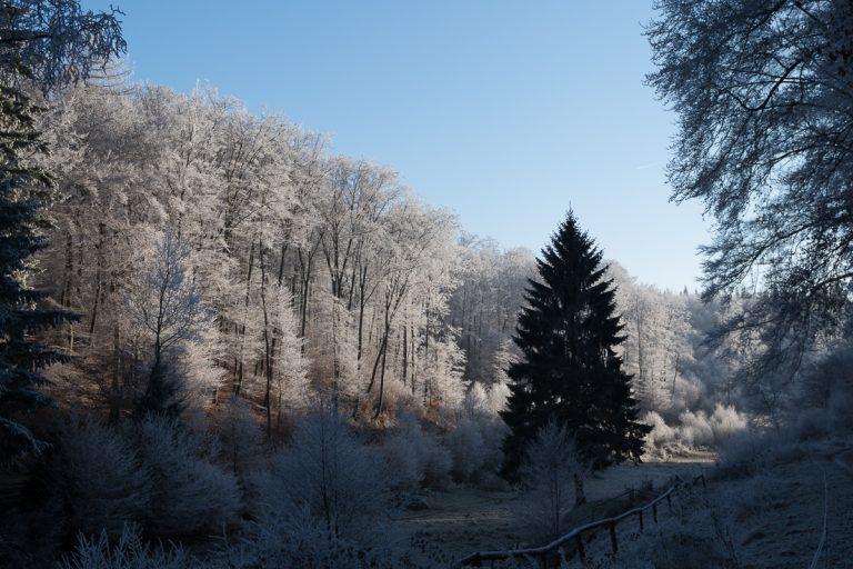 westerwald-33
