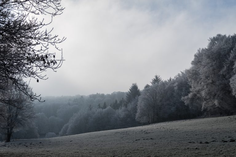 westerwald-8